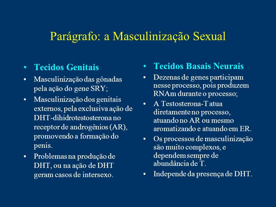 Parágrafo: a Masculinização Sexual