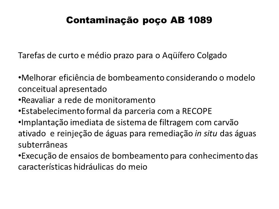 Contaminação poço AB 1089 Tarefas de curto e médio prazo para o Aqüífero Colgado.