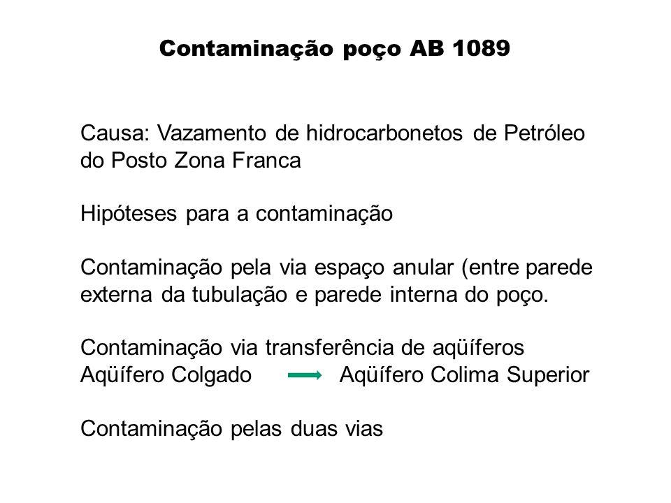 Contaminação poço AB 1089 Causa: Vazamento de hidrocarbonetos de Petróleo do Posto Zona Franca. Hipóteses para a contaminação.