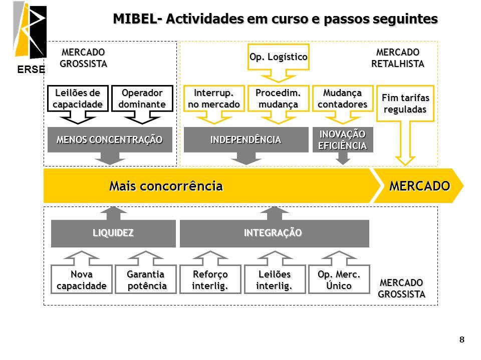 MIBEL- Actividades em curso e passos seguintes