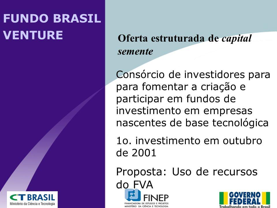 FUNDO BRASIL VENTURE Oferta estruturada de capital semente
