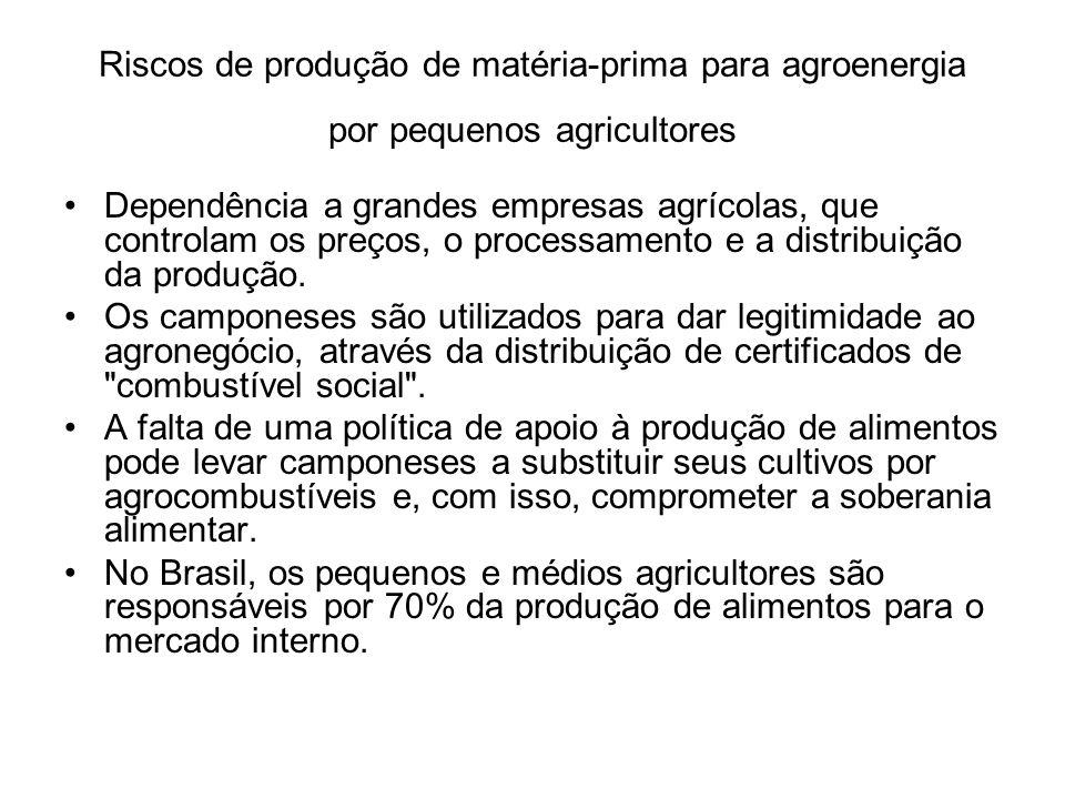 Riscos de produção de matéria-prima para agroenergia por pequenos agricultores