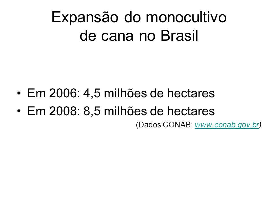 Expansão do monocultivo de cana no Brasil