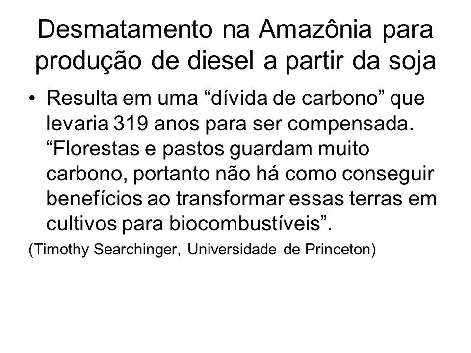 Desmatamento na Amazônia para produção de diesel a partir da soja