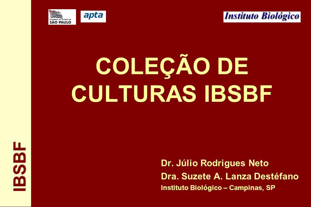 COLEÇÃO DE CULTURAS IBSBF