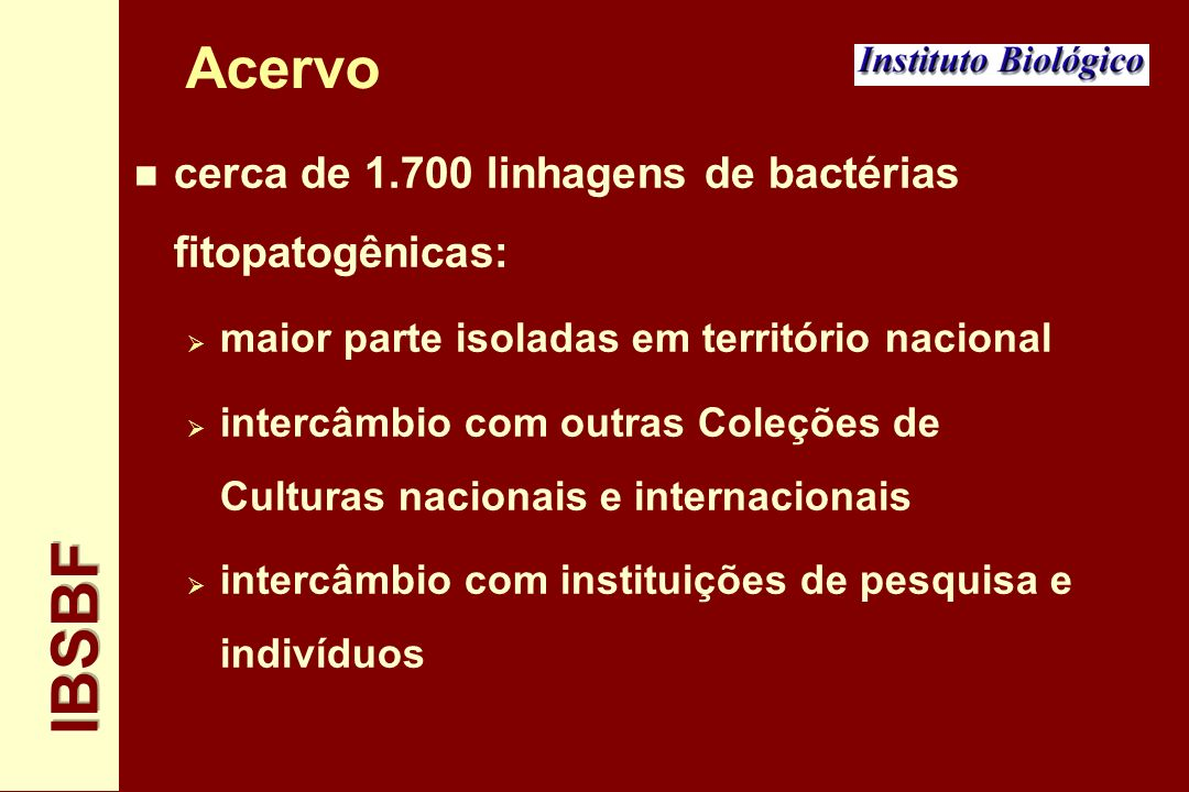 Acervo cerca de 1.700 linhagens de bactérias fitopatogênicas: