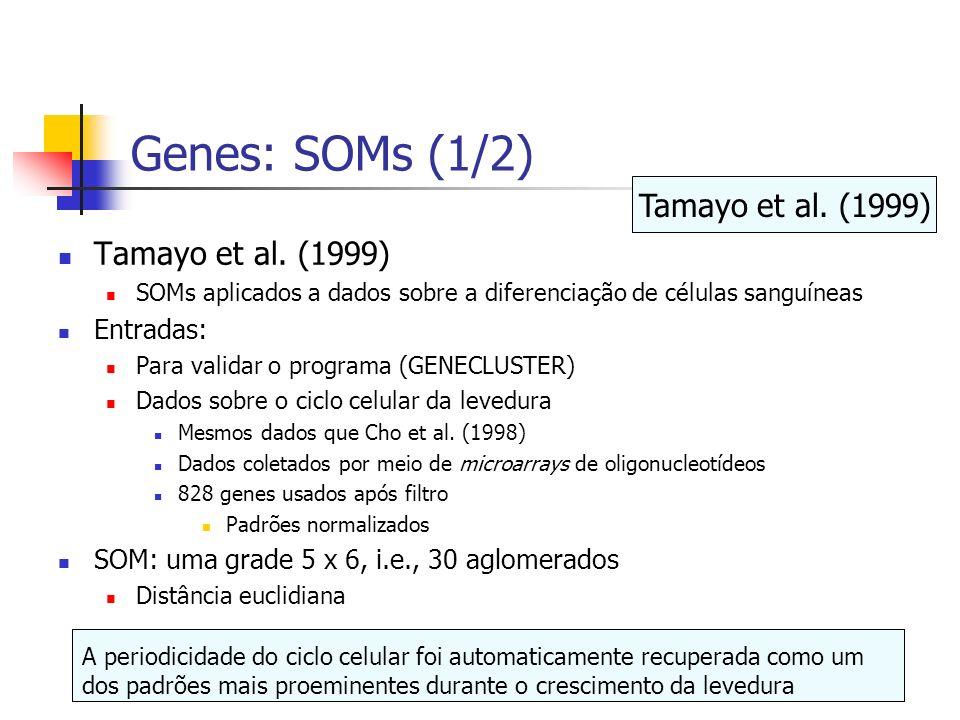 Genes: SOMs (1/2) Tamayo et al. (1999) Tamayo et al. (1999) Entradas: