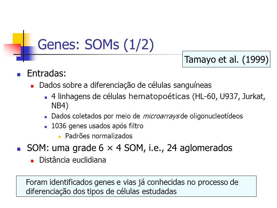 Genes: SOMs (1/2) Tamayo et al. (1999) Entradas: