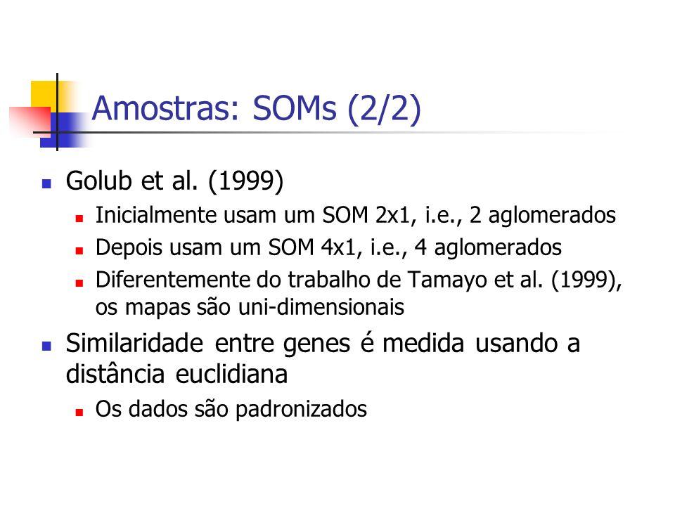 Amostras: SOMs (2/2) Golub et al. (1999)