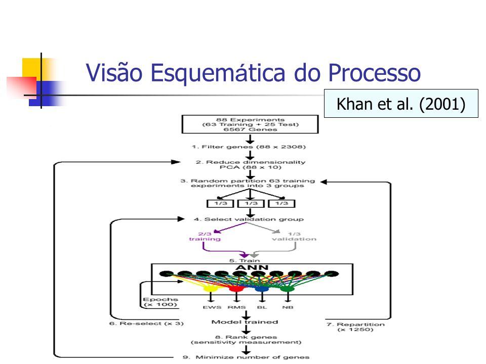 Visão Esquemática do Processo