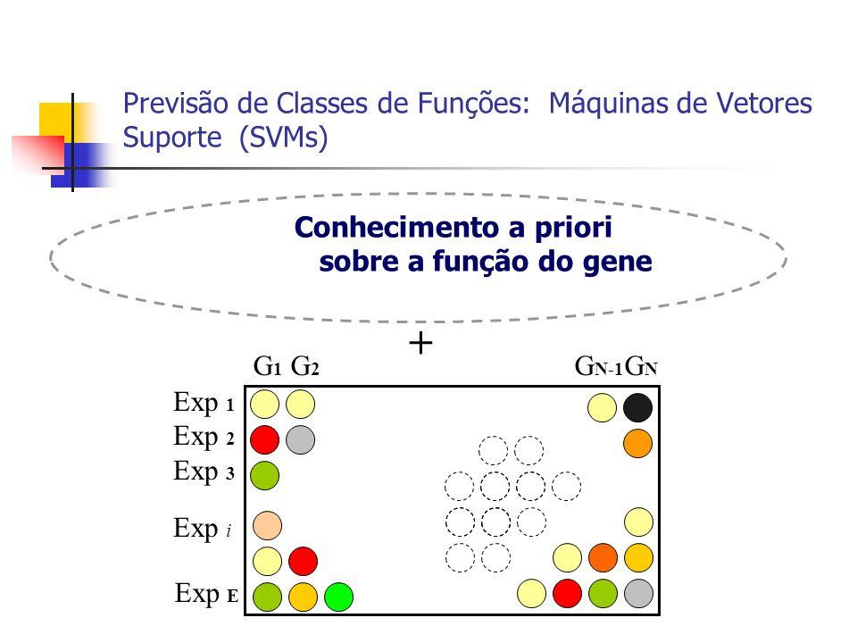 Previsão de Classes de Funções: Máquinas de Vetores Suporte (SVMs)