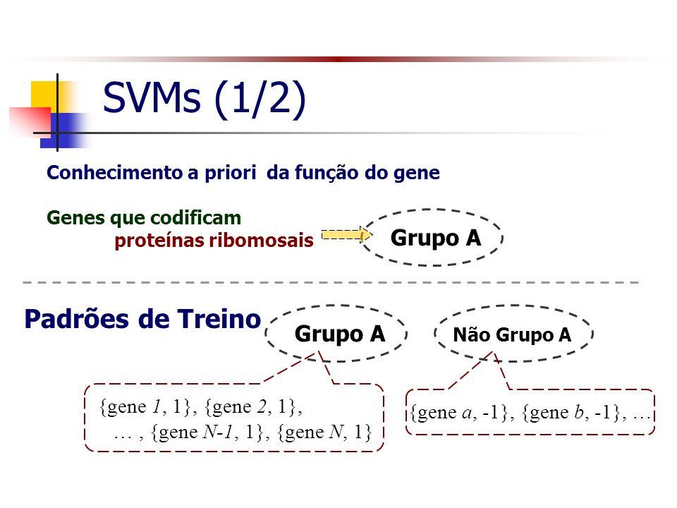 SVMs (1/2) Padrões de Treino Grupo A Grupo A {gene 1, 1}, {gene 2, 1},
