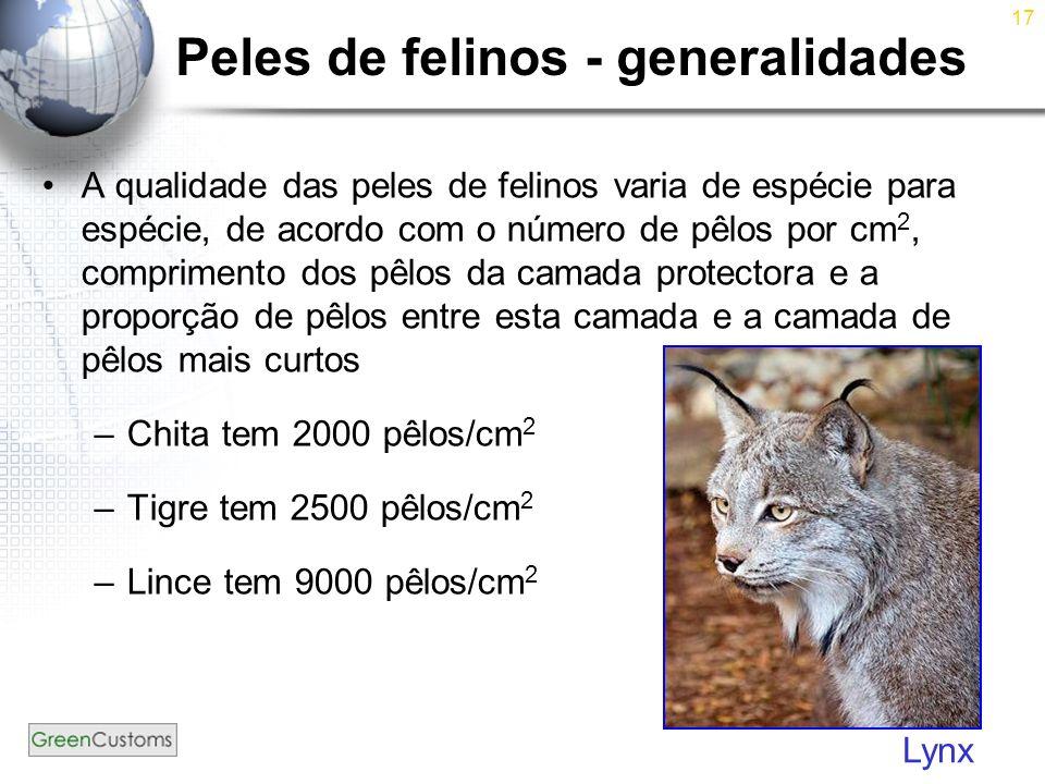 Peles de felinos - generalidades
