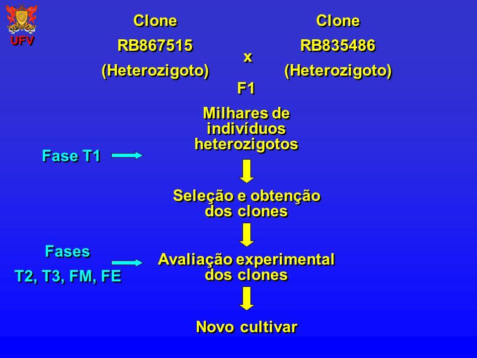 Milhares de indivíduos heterozigotos