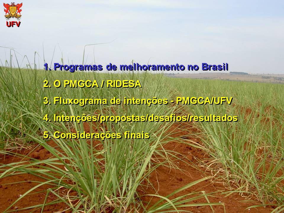 1. Programas de melhoramento no Brasil 2. O PMGCA / RIDESA