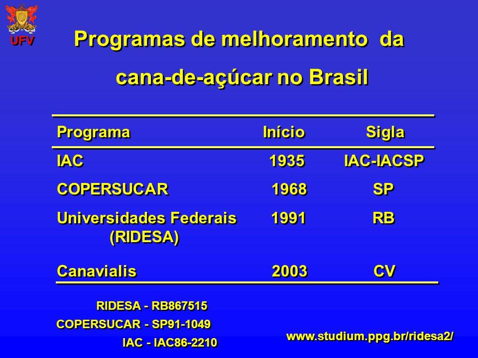Programas de melhoramento da cana-de-açúcar no Brasil