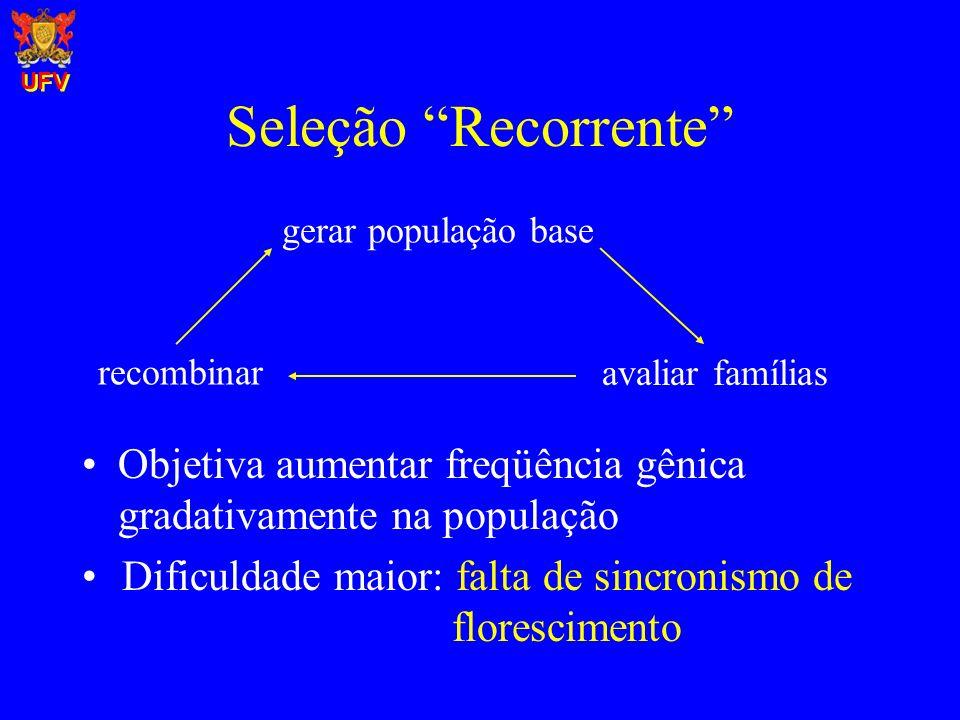 UFV Seleção Recorrente gerar população base. recombinar. avaliar famílias. Objetiva aumentar freqüência gênica gradativamente na população.