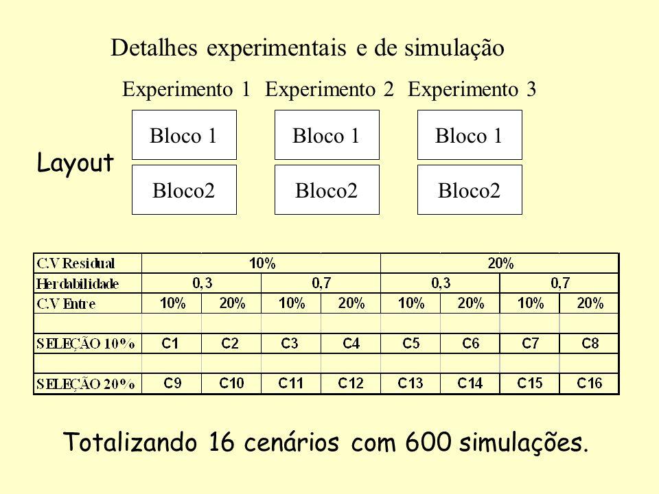 Detalhes experimentais e de simulação