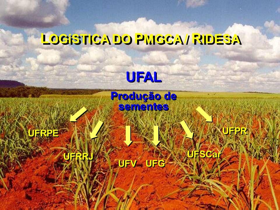 LOGíSTICA DO PMGCA / RIDESA