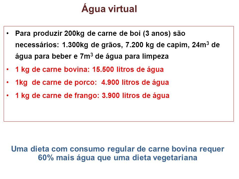 Água virtual
