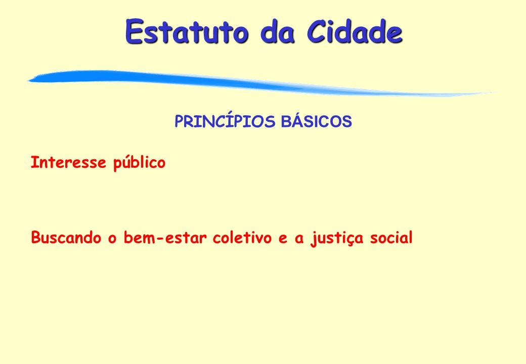 PRINCÍPIOS BÁSICOS Interesse público Buscando o bem-estar coletivo e a justiça social
