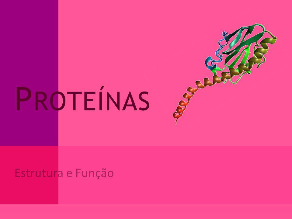 Proteínas Estrutura e Função