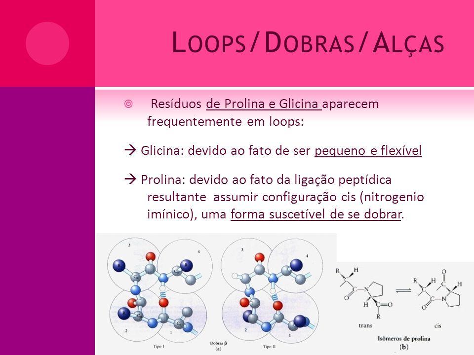 Loops/Dobras/Alças Resíduos de Prolina e Glicina aparecem frequentemente em loops:  Glicina: devido ao fato de ser pequeno e flexível.