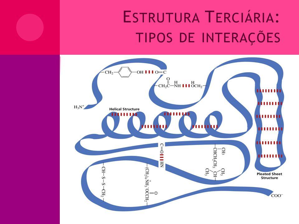 Estrutura Terciária: tipos de interações