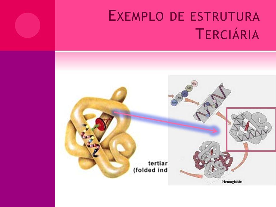 Exemplo de estrutura Terciária