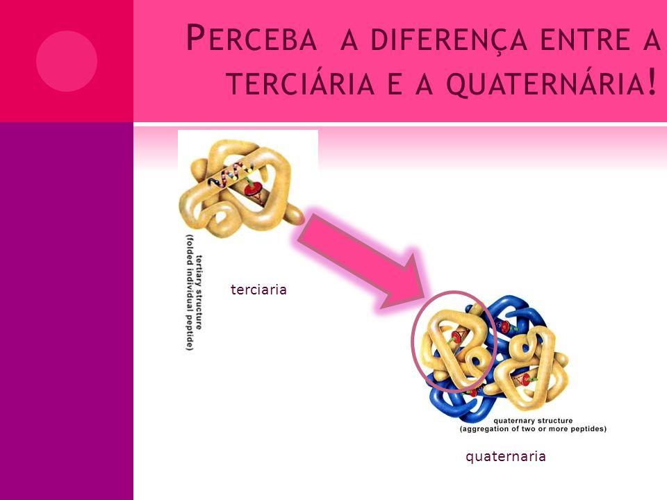 Perceba a diferença entre a terciária e a quaternária!