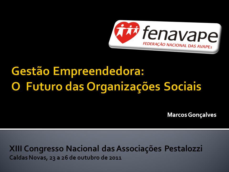Gestão Empreendedora: O Futuro das Organizações Sociais