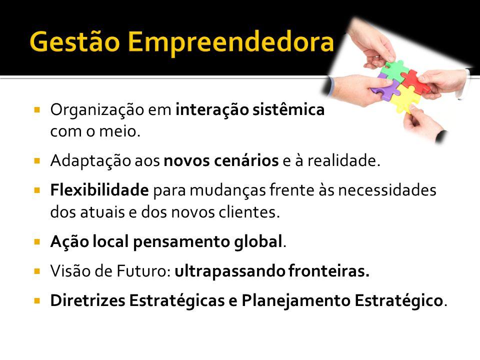 Gestão Empreendedora Organização em interação sistêmica com o meio.