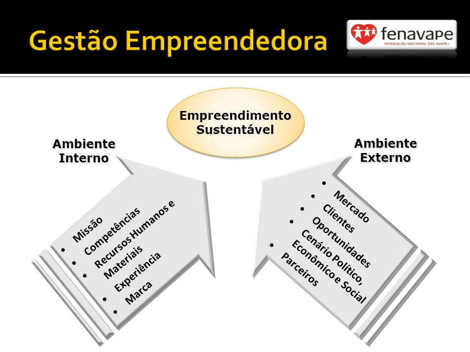 Gestão Empreendedora Empreendimento Sustentável Ambiente Interno