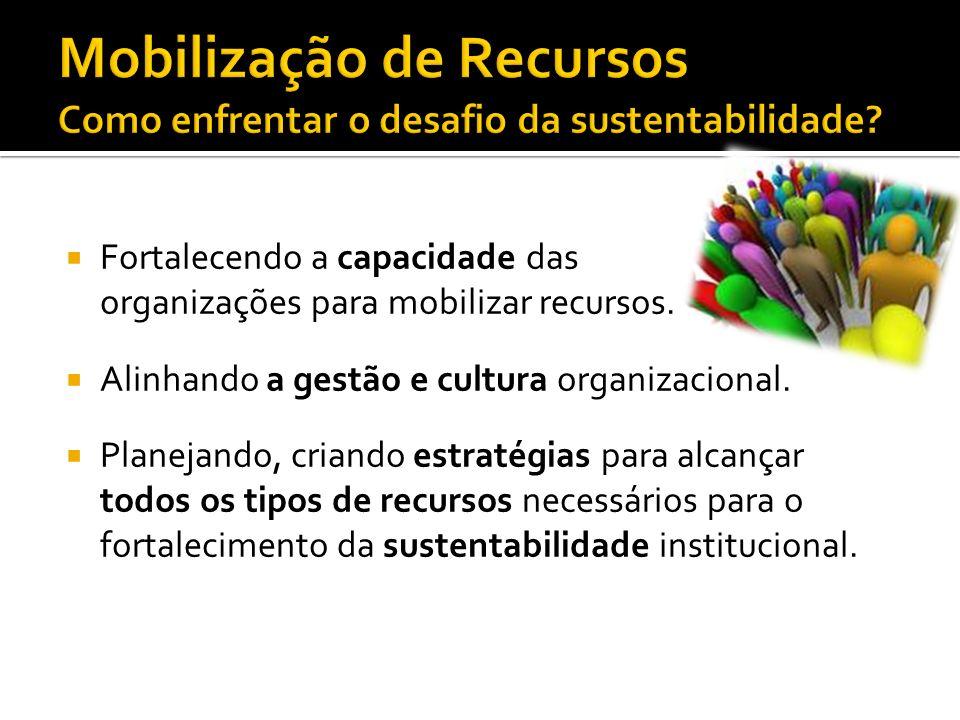 Mobilização de Recursos Como enfrentar o desafio da sustentabilidade