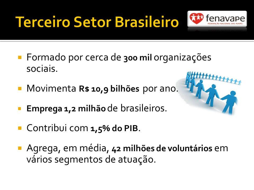 Terceiro Setor Brasileiro