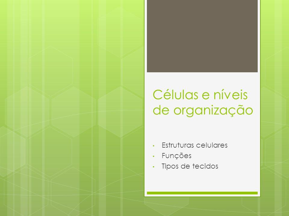 Células e níveis de organização