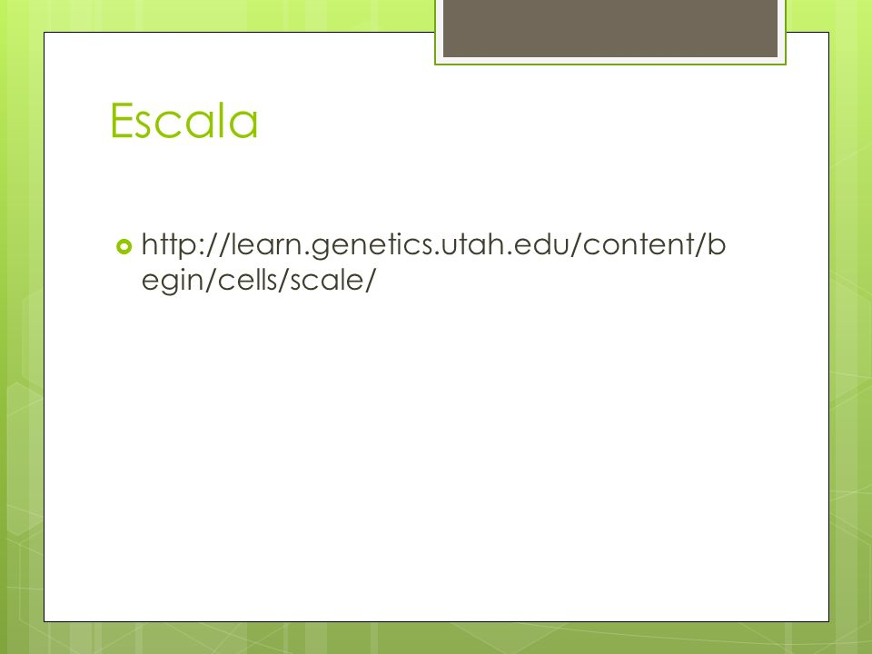 Escala http://learn.genetics.utah.edu/content/begin/cells/scale/