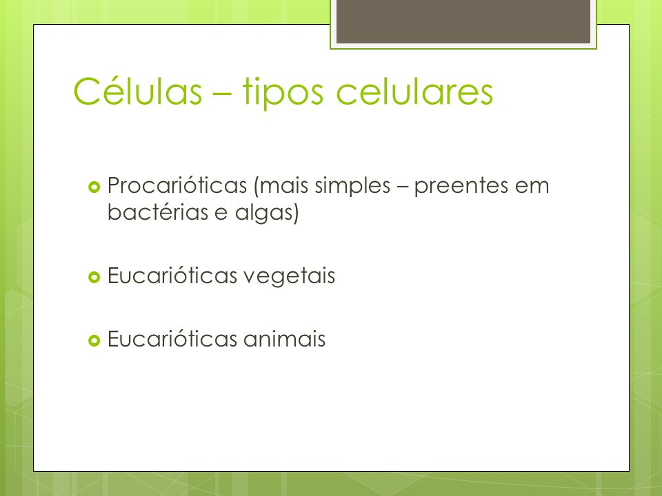Células – tipos celulares