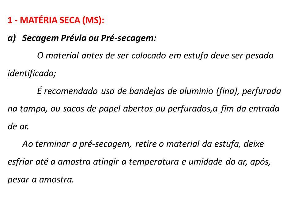Secagem Prévia ou Pré-secagem: