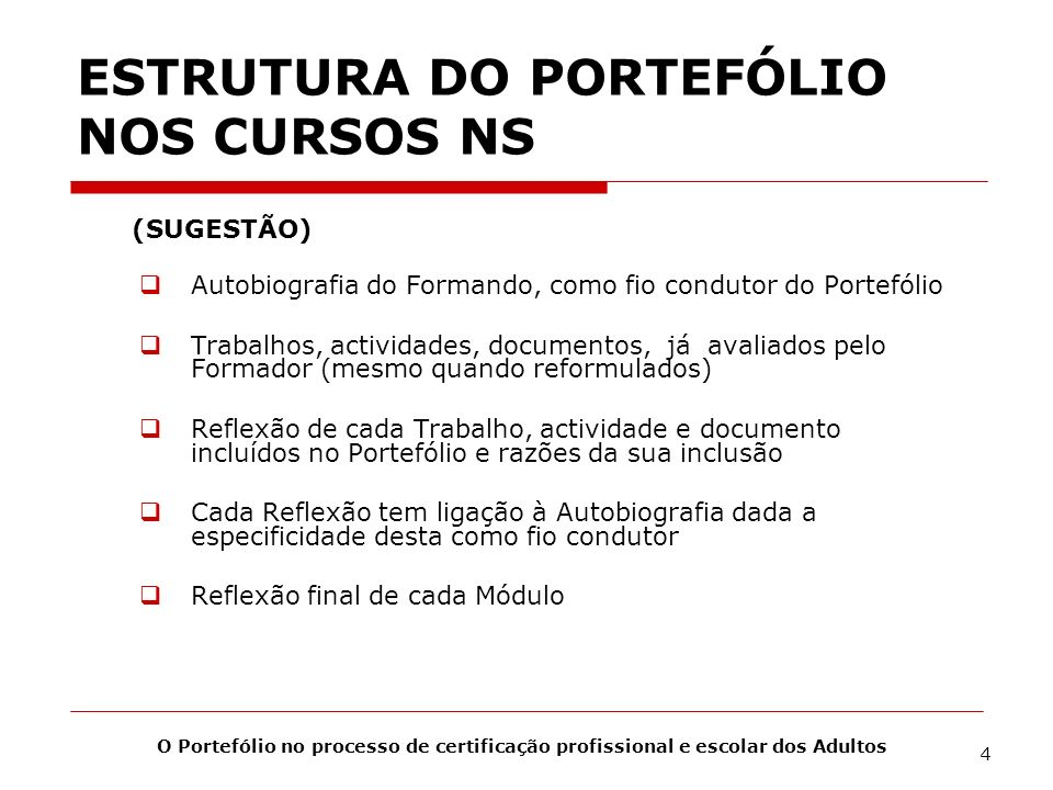 ESTRUTURA DO PORTEFÓLIO NOS CURSOS NS