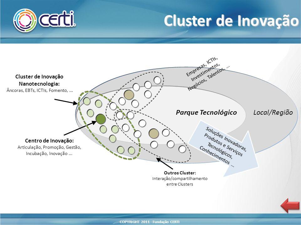 Cluster de Inovação Nanotecnologia: