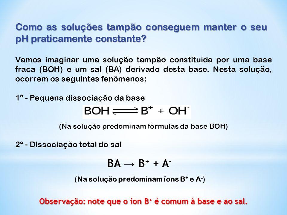 Observação: note que o íon B+ é comum à base e ao sal.