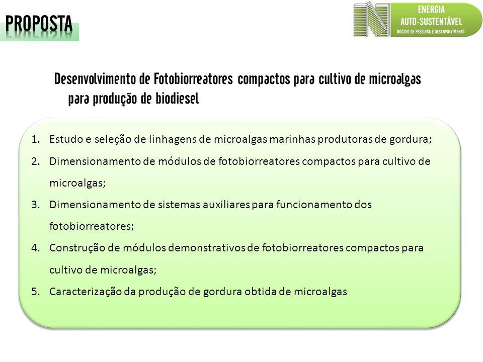 PROPOSTA Desenvolvimento de Fotobiorreatores compactos para cultivo de microalgas para produção de biodiesel.