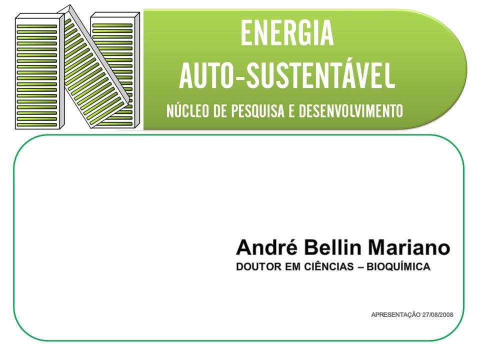 André Bellin Mariano DOUTOR EM CIÊNCIAS – BIOQUÍMICA