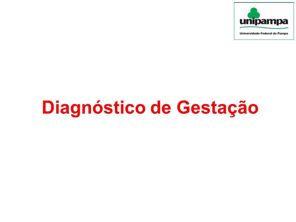 Diagnóstico de Gestação