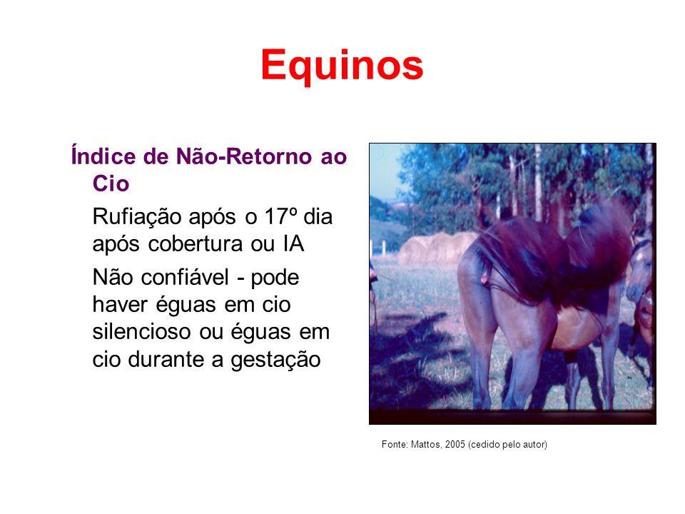 Equinos Índice de Não-Retorno ao Cio
