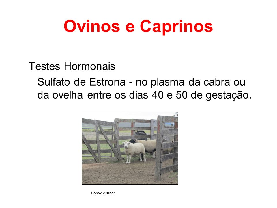 Ovinos e Caprinos Testes Hormonais