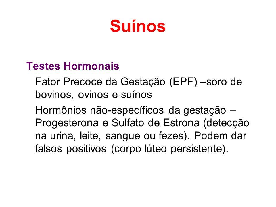Suínos Testes Hormonais