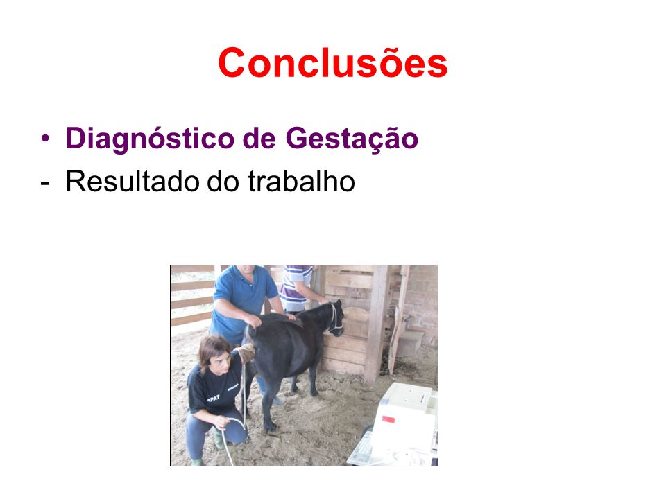 Conclusões Diagnóstico de Gestação Resultado do trabalho