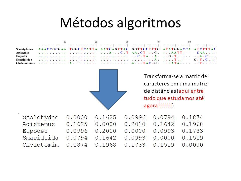 Métodos algoritmos Transforma-se a matriz de caracteres em uma matriz de distâncias (aqui entra tudo que estudamos até agora!!!!!!!)